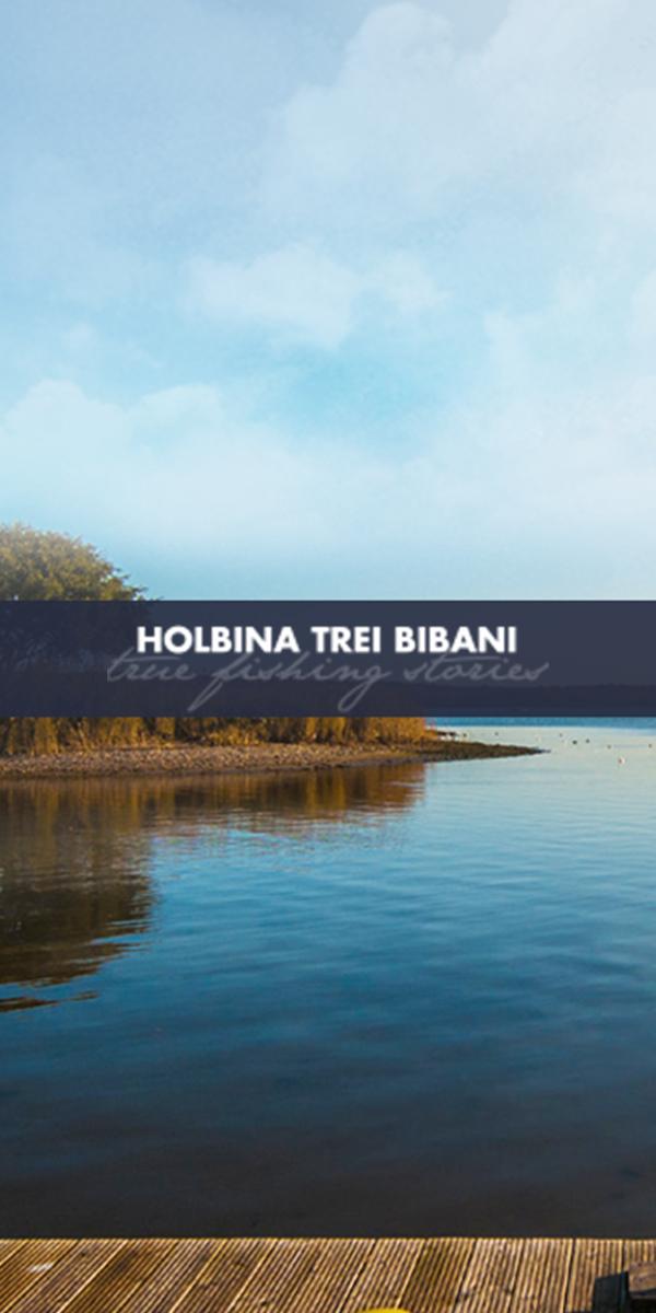 Holbina Trei Bibani